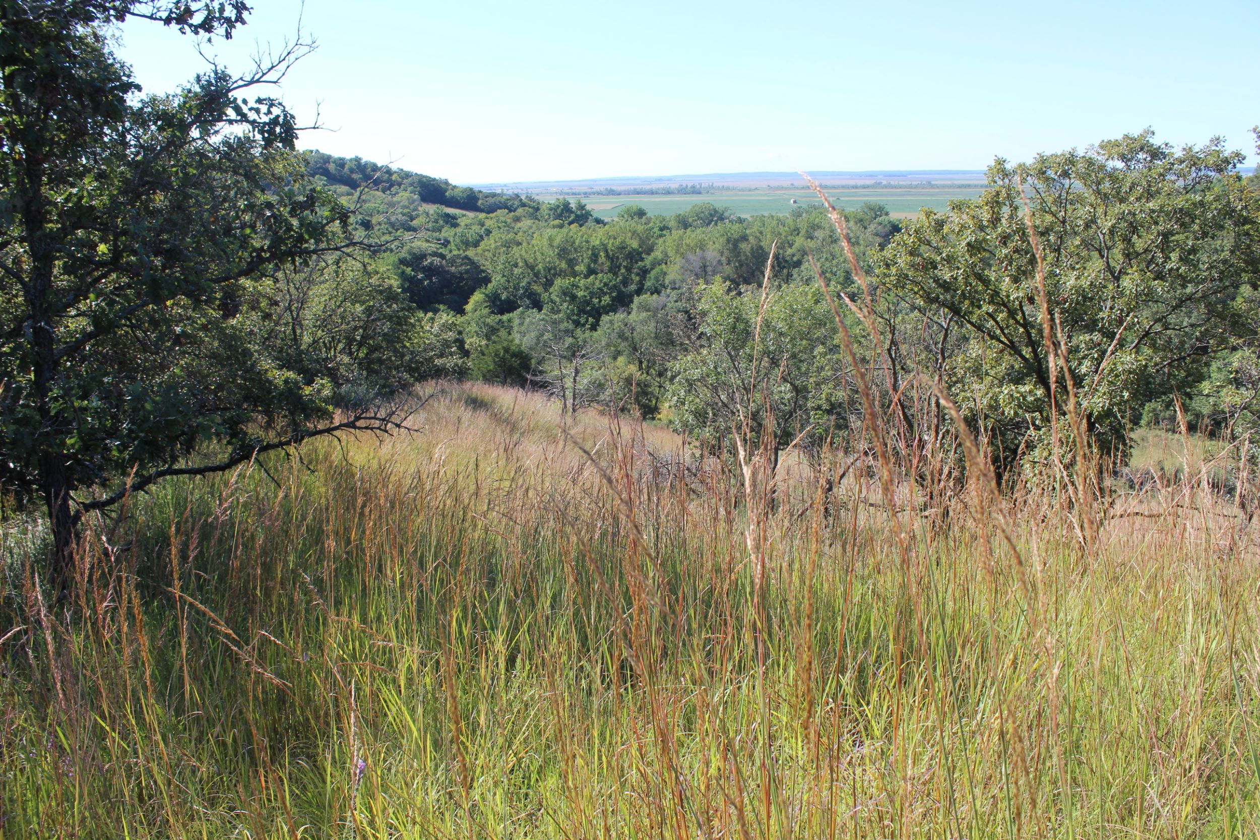 Prairie, wetlands protected at Silver Lake in Palo Alto County