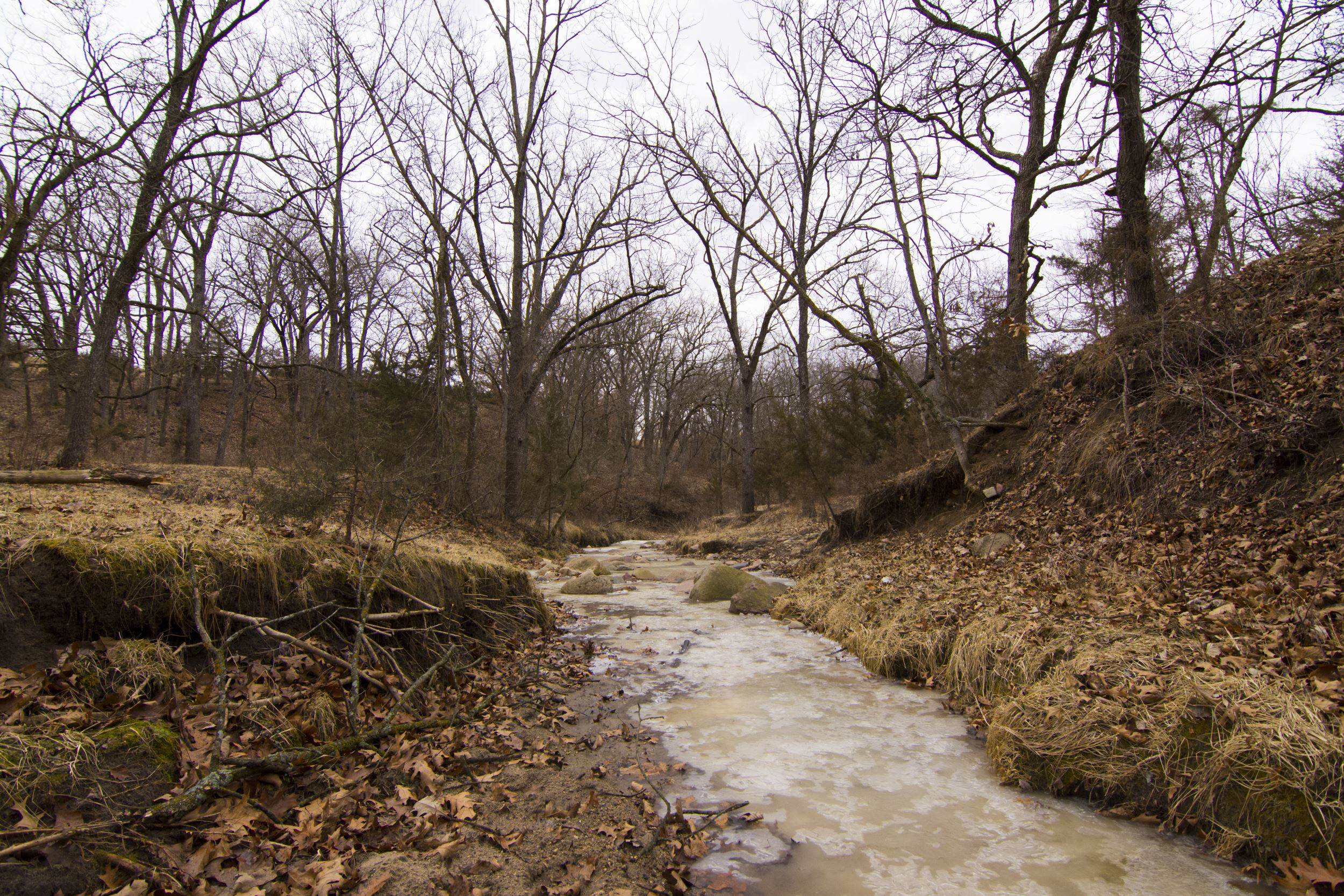 INHF protects 1,000-acre property in Madison and Clarke counties