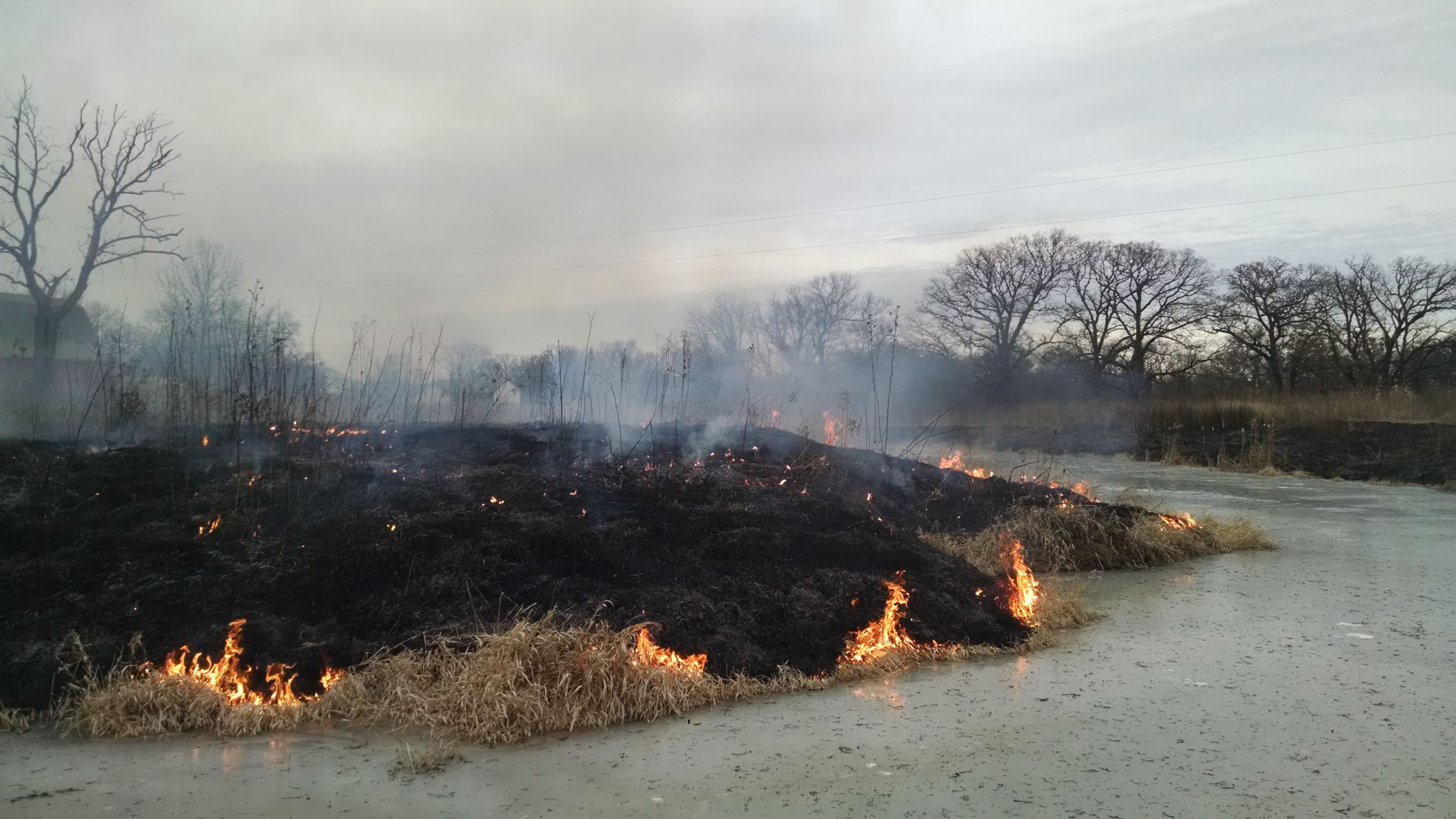 Prescribed fire in the winter?