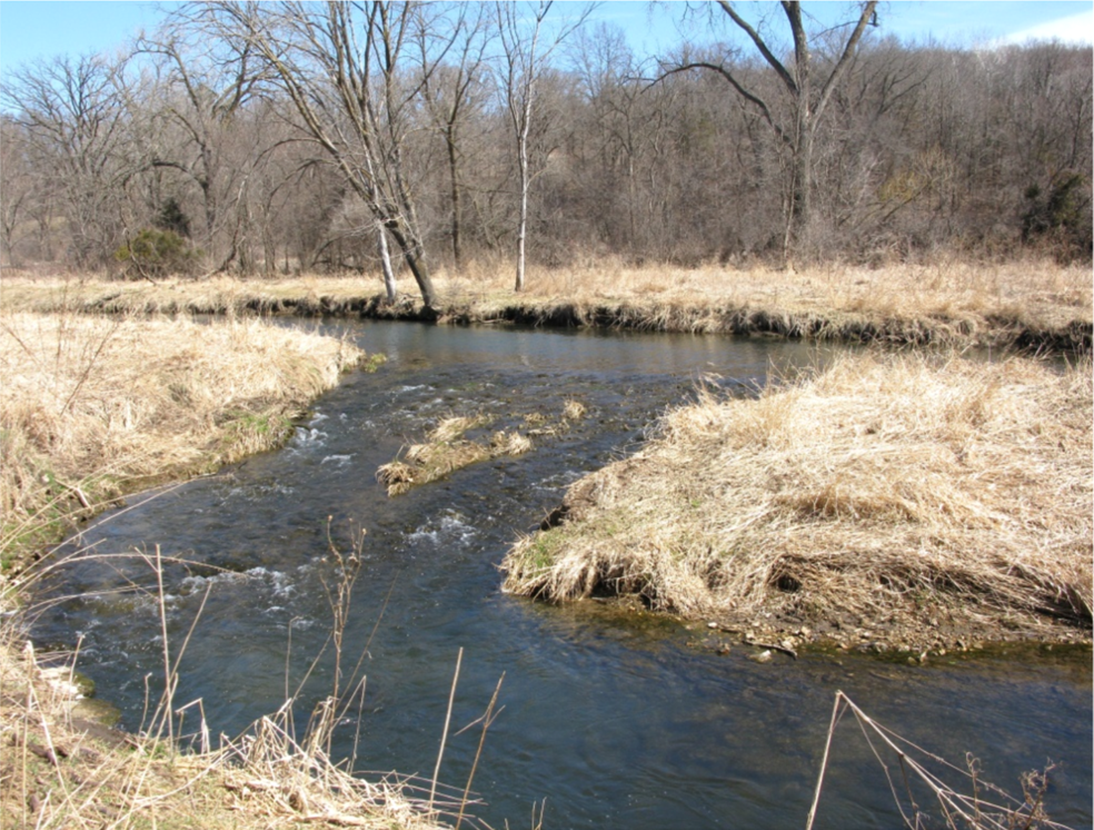 Martens Addition to Kuehn Conservation Area