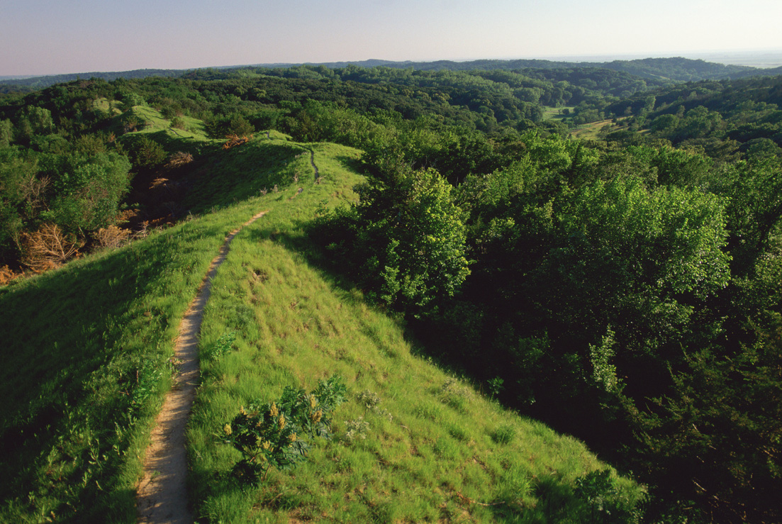 REAP In Your Region: Loess Hills State Forest, Lewis and Clark State Park and more in western Iowa