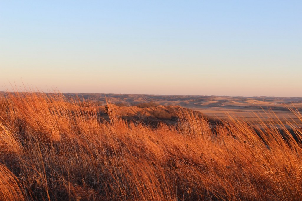 Turin Prairie lies in the heart of the Loess Hills, adjoining a state preserve, viewed from a national scenic byway.