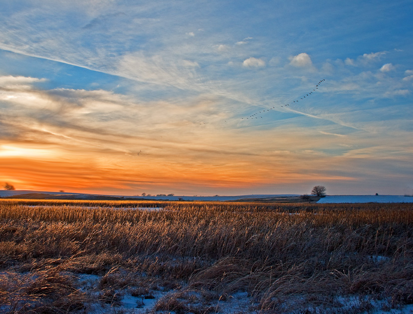 The sun sets over the Spring Run Wetland. (Photo by Daniel Ruf)