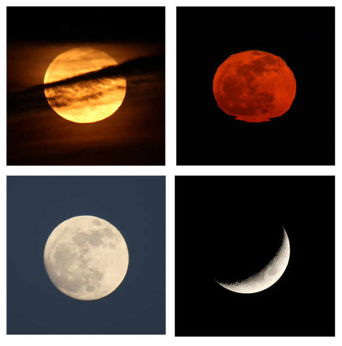 """Depending on the cloud cover or atmospheric distortion, the view of the moon phases each month can be very different.  In this series, starting at the upper left, we see it behind a thin layer of clouds. Next it appears just above the horizon, distorted by atmospheric heat and humidity. On the bottom left, we see a full moon high in the sky on a clear night. Lastly, a quarter moon high in the west makes it possible to see shadows cast by the craters on its surface."" – Carl Kurtz"