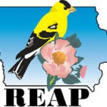 reap_color-logo
