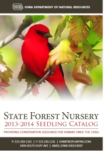 state forest nursery catalog