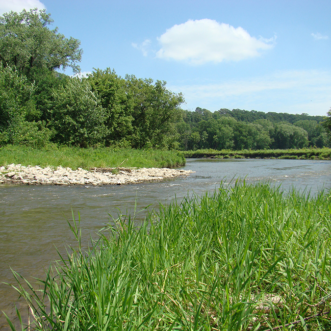 Winneshiek County Trout Streams