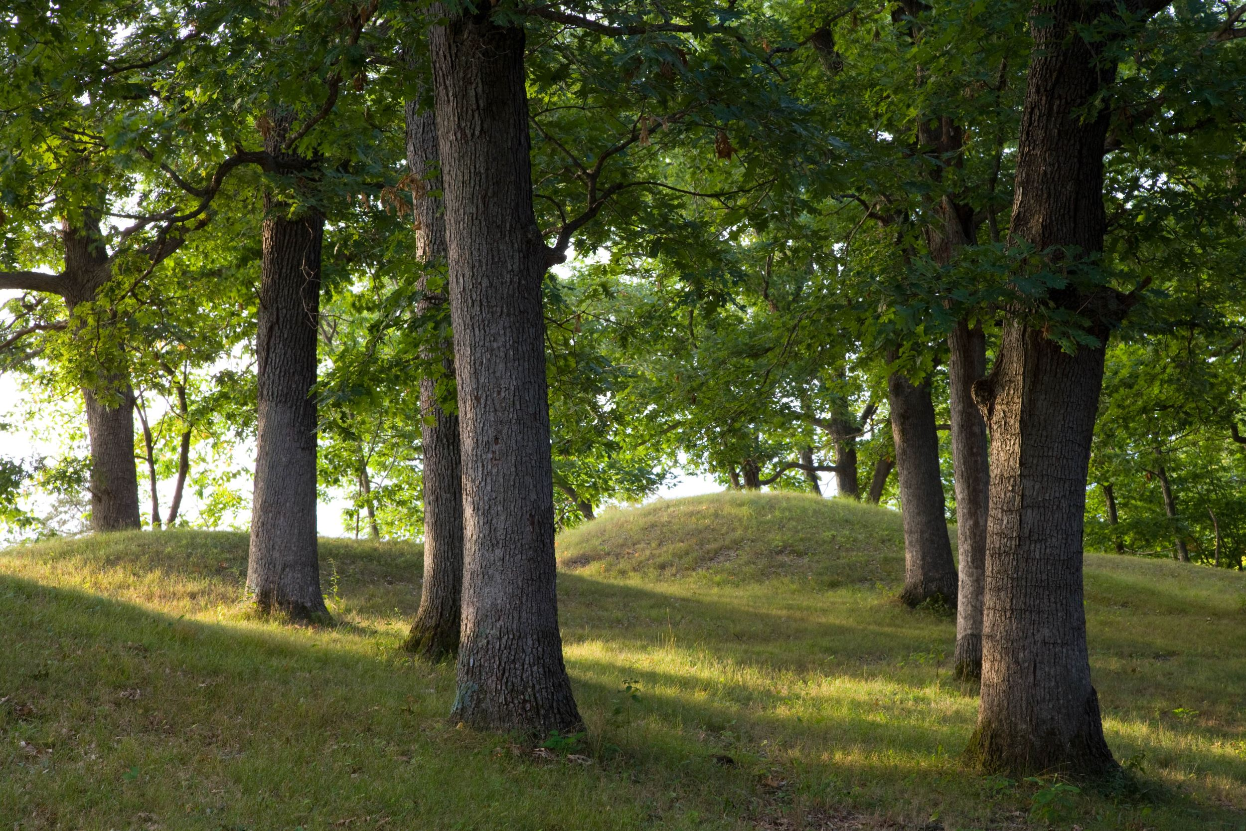 Native American Mounds