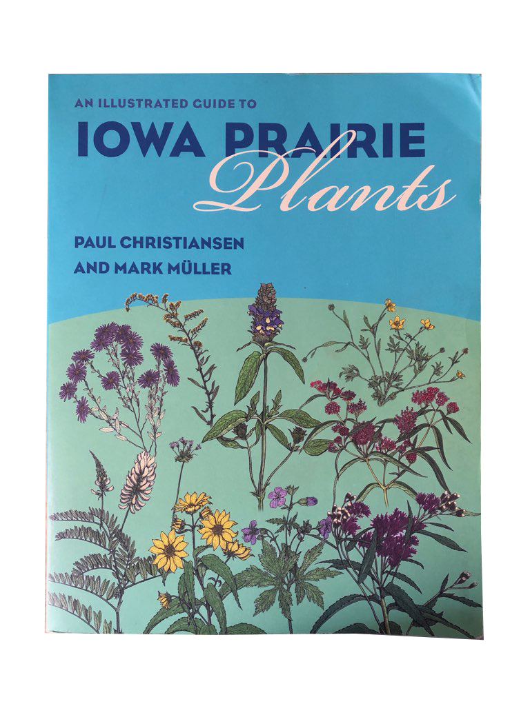Iowa Prairie Plants