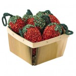 Birdseed Strawberries