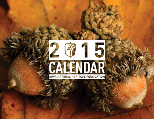 Wordless Wednesday – 2015 INHF Calendar