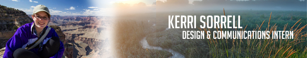 Kerri_Author_Banner