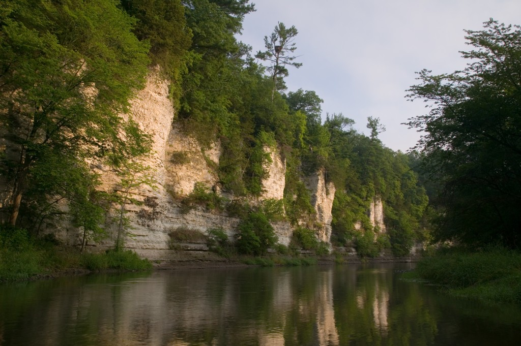 Limestone bluffs along the Upper Iowa River in Winneshiek County (Photo by Clint Farlinger)
